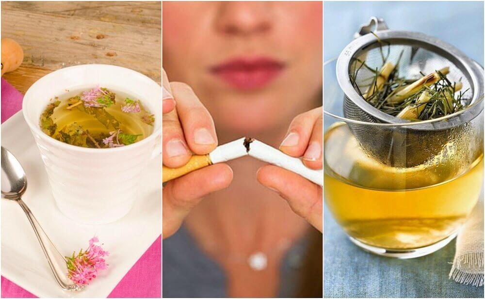 Como acalmar a ansiedade de fumar com 5 infusões de plantas