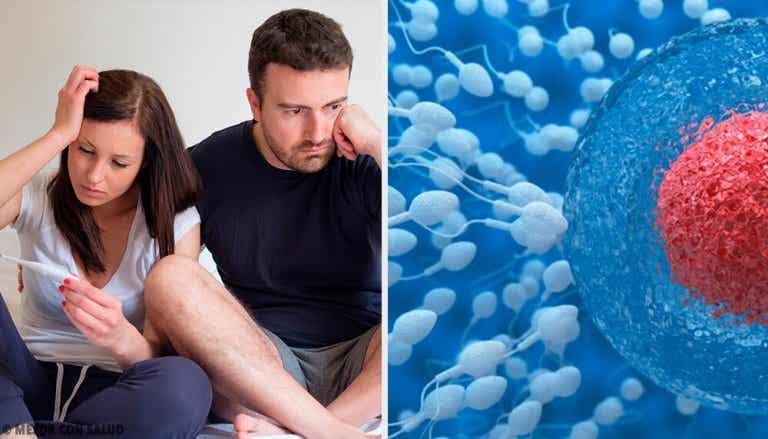 Como melhorar a fertilidade masculina