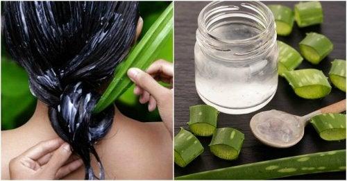 Como ter um cabelo mais saudável usando aloe vera