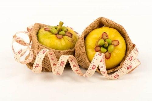 Garcinia cambogia, uma ajuda natural para perder peso