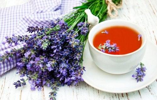 Chá de lavanda é um sonífero natural