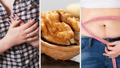 Nozes são frutos secos que ajudam a perder peso e a manter a saúde cardiovascular