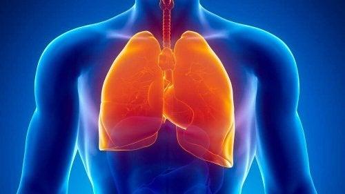 A tuberculose pode ser uma das causas médicas de suores noturnos