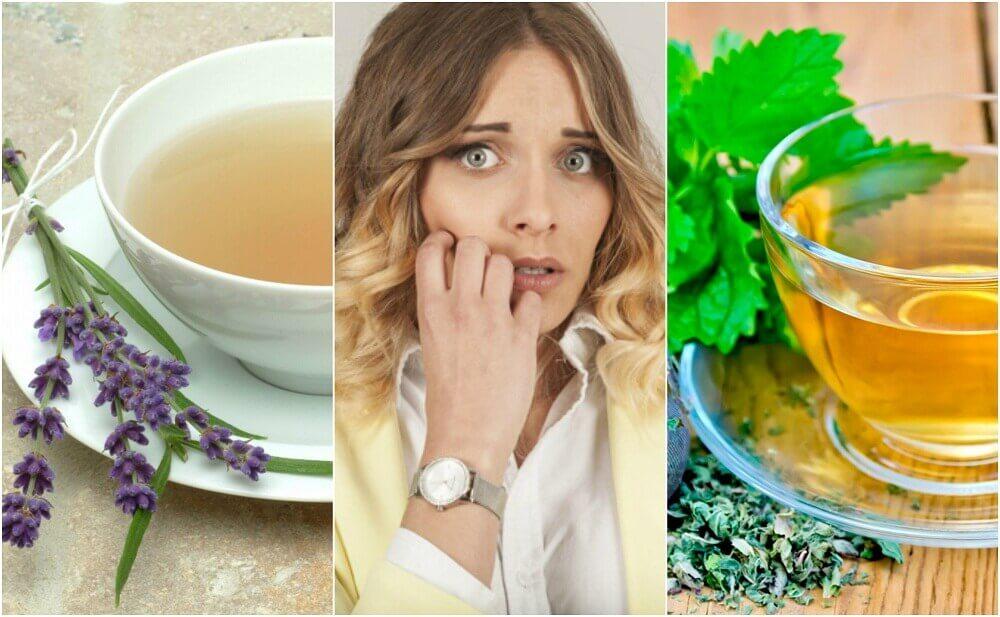 Como acalmar o nervosismo com 5 remédios à base de ervas