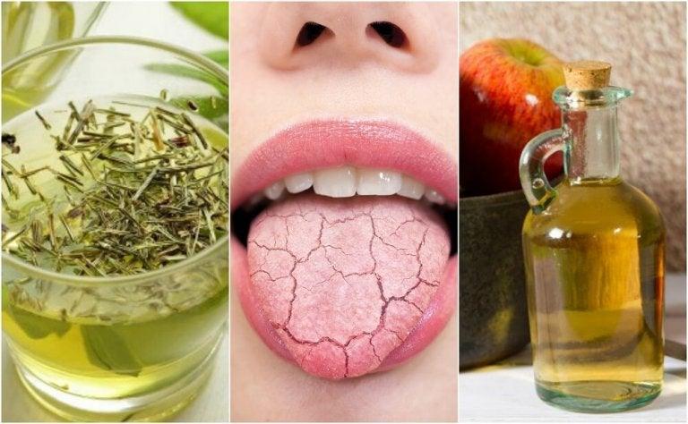 5 remédios caseiros para aliviar a boca seca