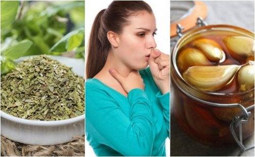 5 remédios naturais para reduzir os sintomas da bronquite
