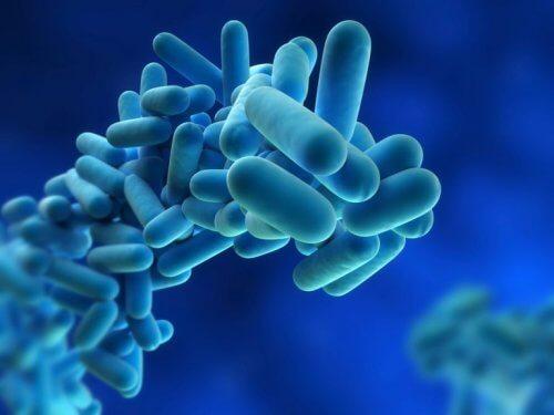 Gens dos microrganismos causantes da dst
