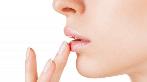 Óleo de argan ajuda a hidratar os lábios