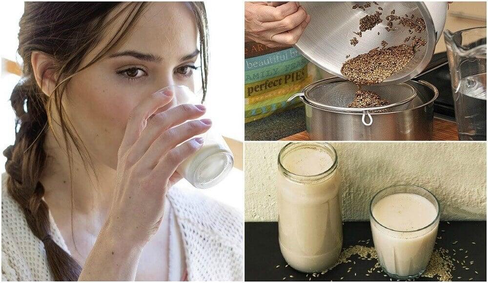 Como preparar leite de alpiste e quais são seus benefícios?