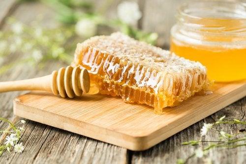 Própolis e mel de abelhas