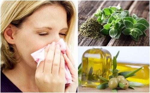 Remédio de orégano e azeite de oliva para proteger o sistema respiratório