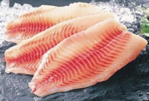Filés de peixe
