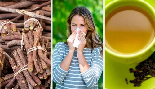 4 alternativas naturais para combater a rinite
