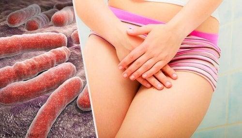 5 dicas para evitar o contágio da candidíase vaginal