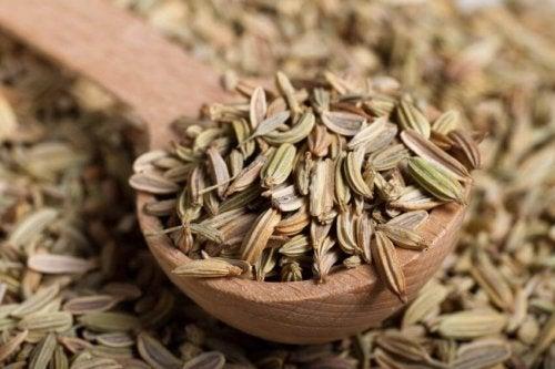 Erva-doce ajuda a combater a inflamação das pálpebras