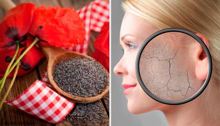 7 esfoliantes corporais para a pele seca