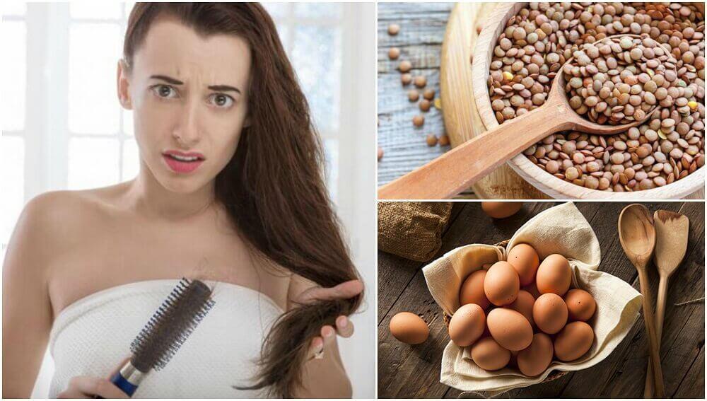 alimentos q evitam a queda de cabelo