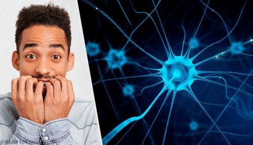 5 truques para acalmar os nervos