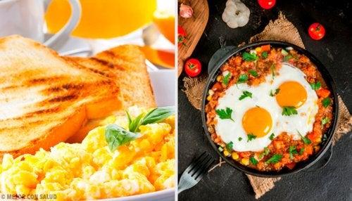 Tudo sobre o ovo e sua contribuição nutricional
