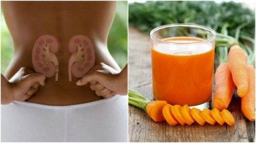 Desintoxique seus rins com um suco de cenoura e pepino