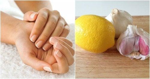 Endurecedor de alho e limão para fortalecer as unhas