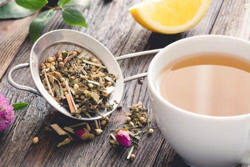 Chá de erva-doce para combater os gases