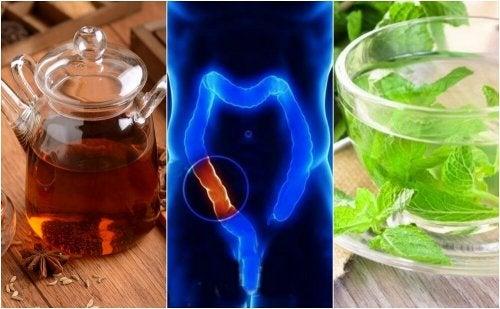 Como preparar 5 chás medicinais para limpar o cólon naturalmente