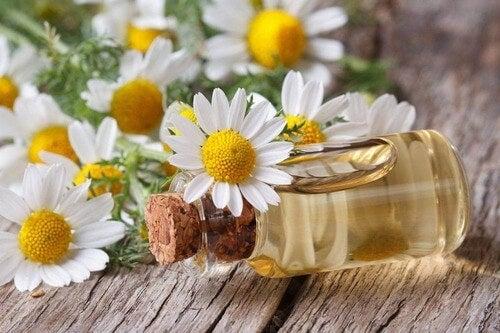 O óleo essencial de camomila pode ajudar a aliviar o ardor nos pés
