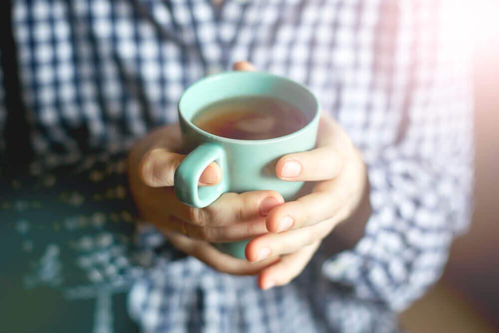 Chá de cardo de leite