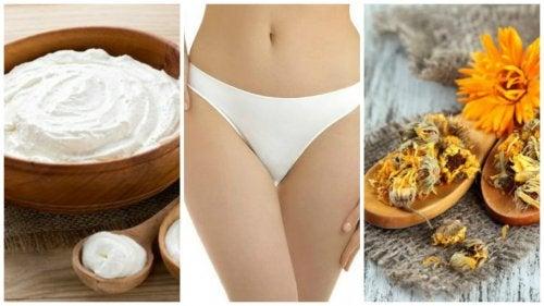 6 remédios naturais para combater o ressecamento vaginal