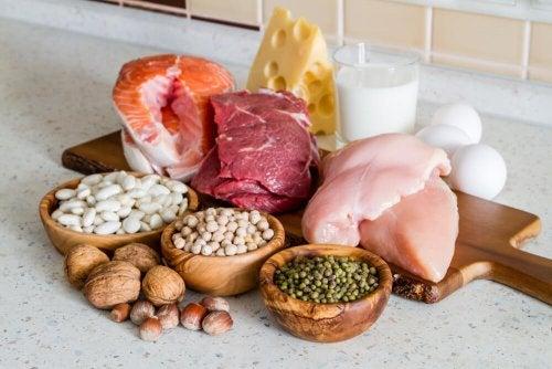 Alimentos fonte de proteínas
