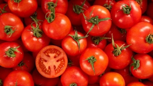 Tomates vermelhos