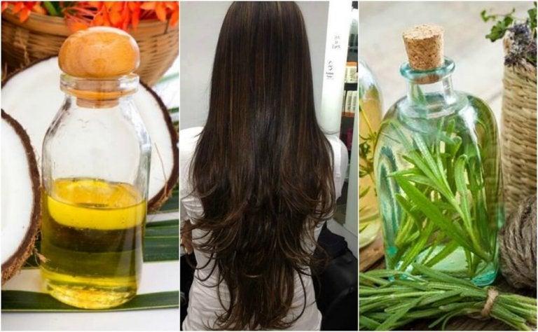 Tratamento caseiro de óleo de coco e alecrim para fazer o cabelo crescer