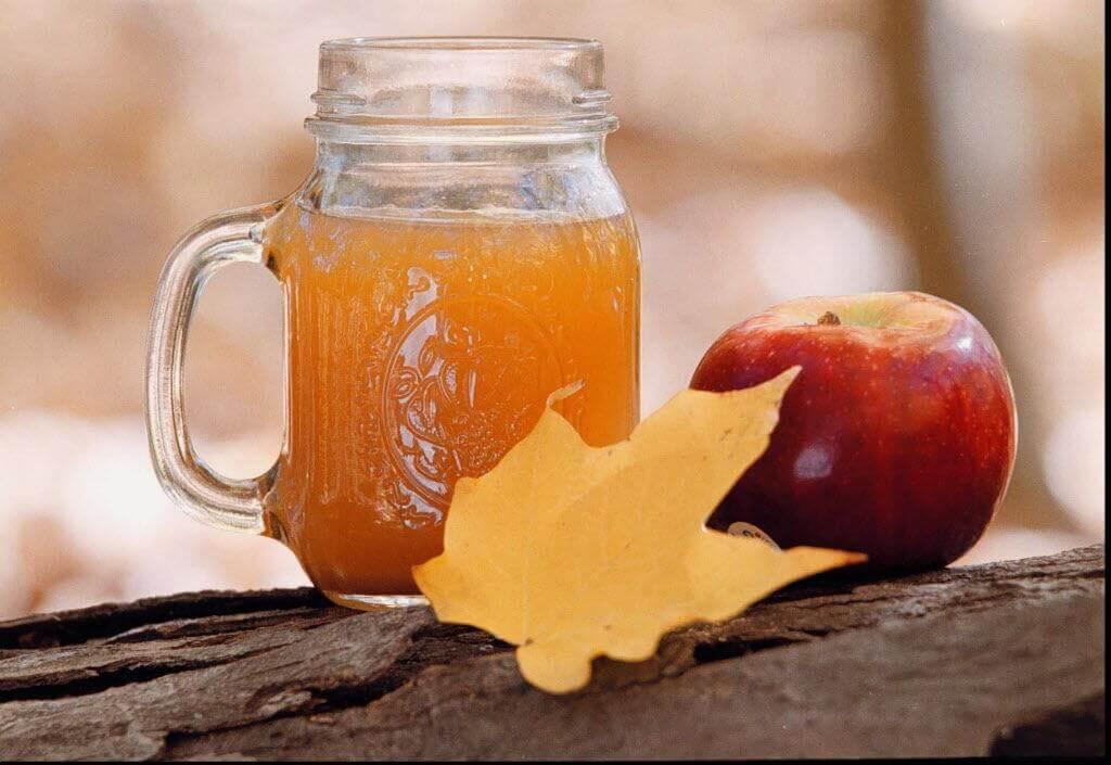 Remédio caseiro de vinagre de maçã e sal