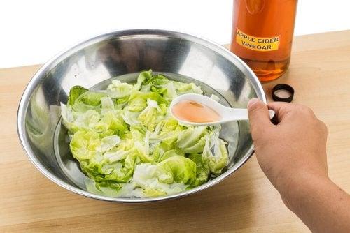 Vinagre de maçã para temperar a salada