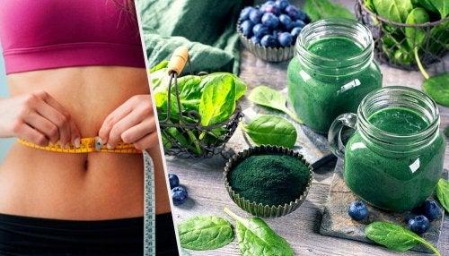 4 benefícios da espirulina para perder peso