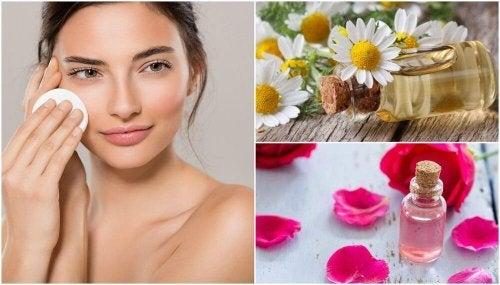 4 tônicos caseiros para refrescar a pele todos os dias