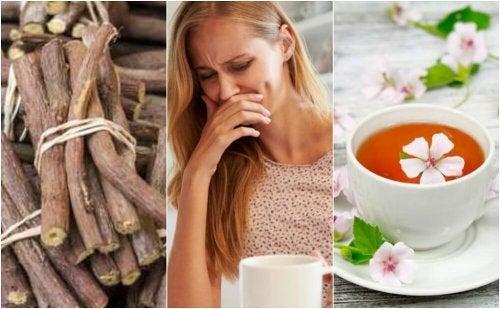 5 remédios naturais para aliviar a esofagite