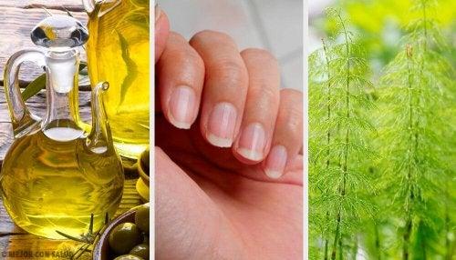 5 truques para fortalecer as unhas fracas
