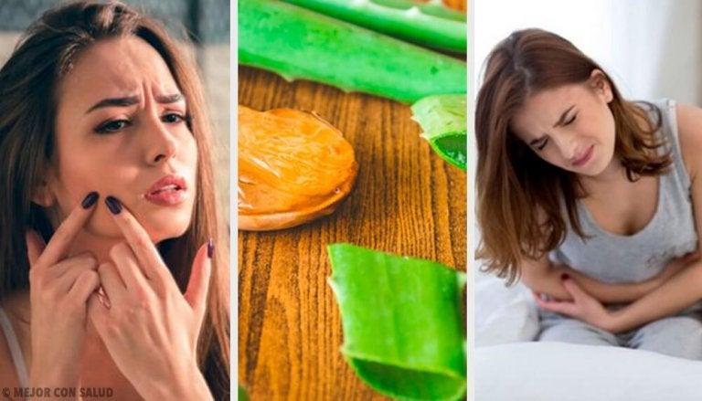 6 formas de usar aloe vera e melhorar sua saúde