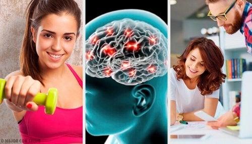8 conselhos neurobiológicos que irão ajudá-lo a ser mais feliz