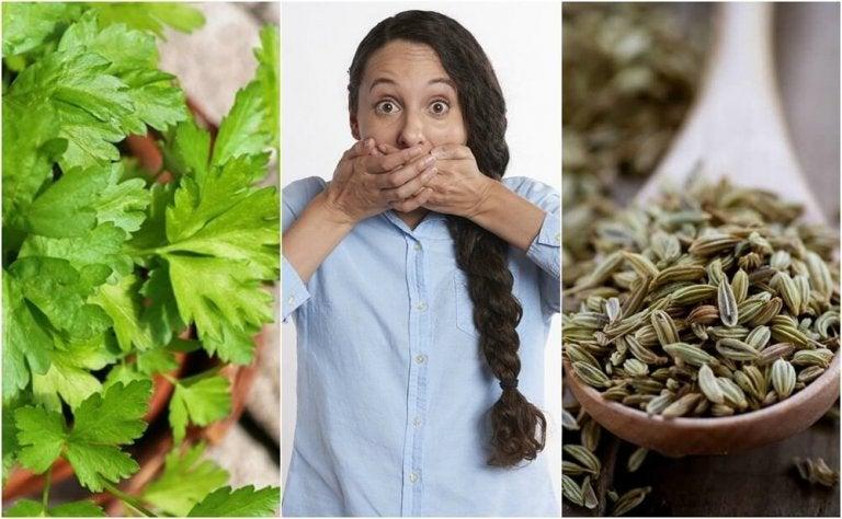 Como combater a halitose estomacal com 5 remédios de origem natural