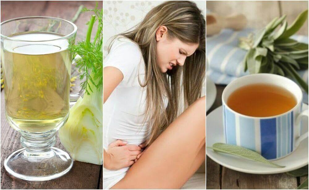 Como tratar a diarreia com 6 remédios à base de ervas