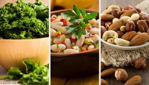 Alimentos vegetais ricos em cálcio
