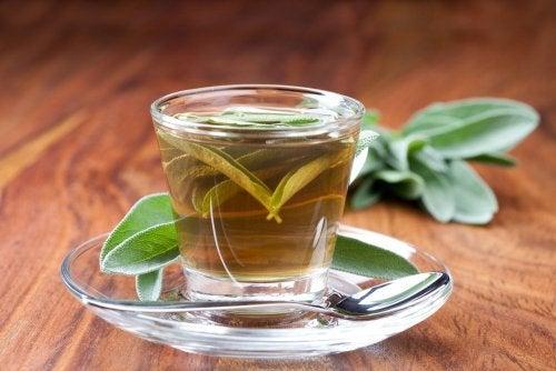 Chá de sálvia para combater a placa na garganta