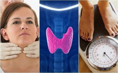 Como saber se temos hipotireoidismo? Conheça 10 sintomas