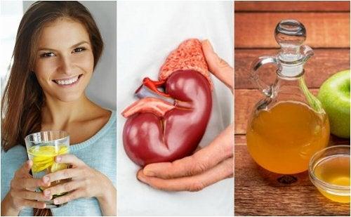 6 dicas para eliminar cálculos renais
