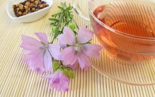 Infusão que ajuda a tratar a sinusite