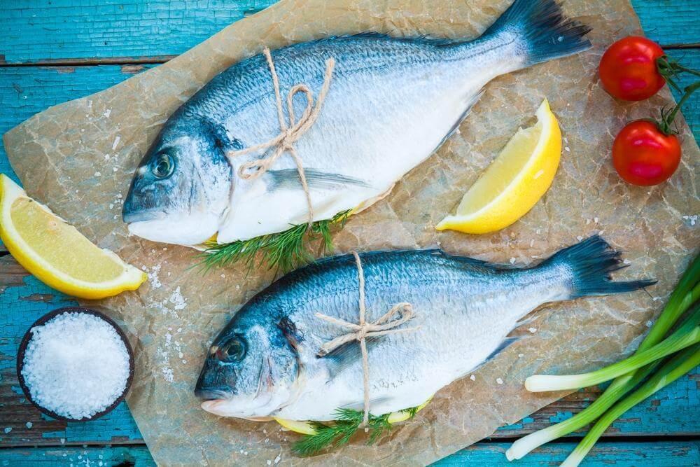 Peixes azuis