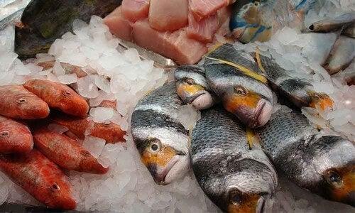 Como identificar um peixe em mau estado